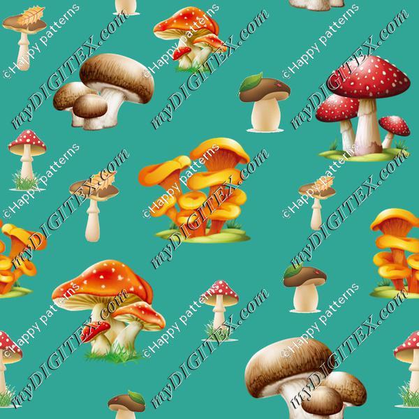 Mushrooms on blue Autumn Nature