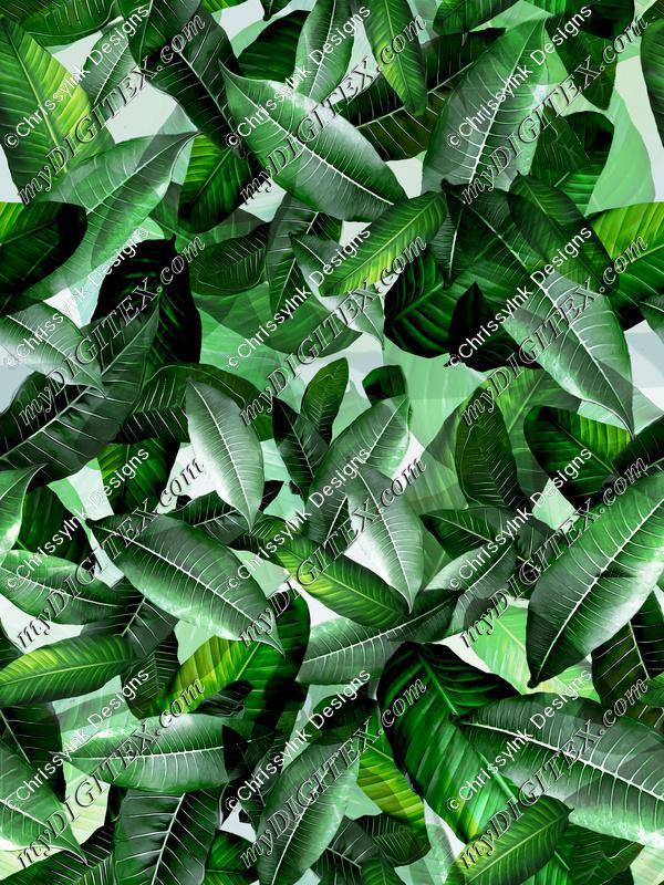 Banana Leaf Tropical Green