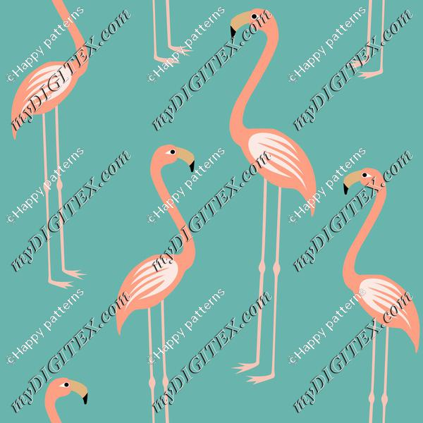 Pink flamingospink flaminosFlamingos living coral