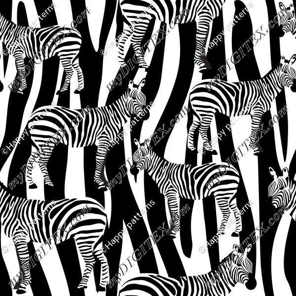 Zebra on Zebra Skin