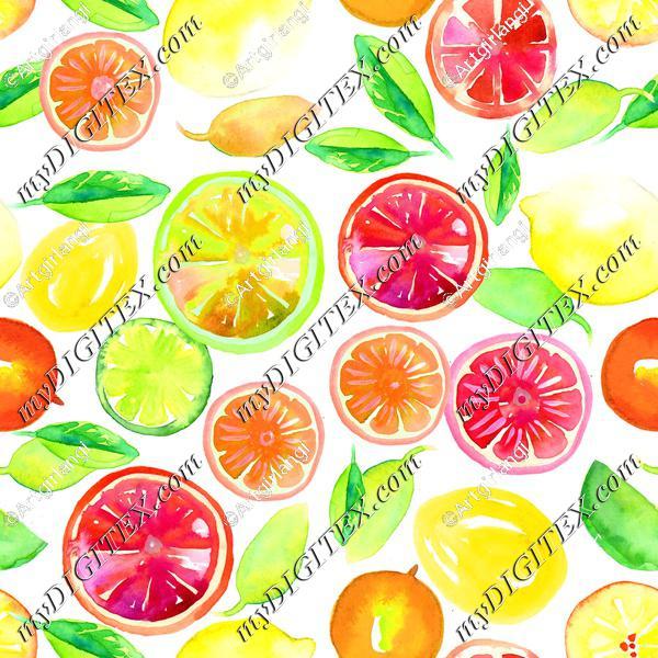 Citrus in Watercolor White BG