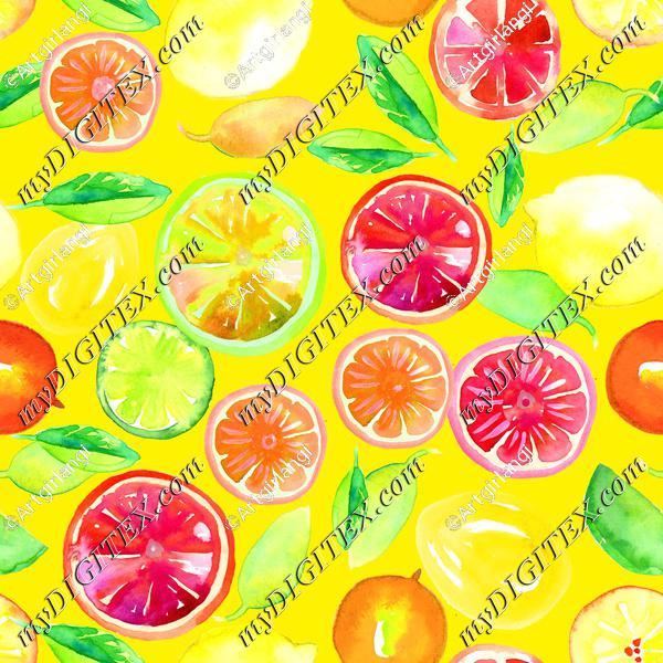 Citrus in Watercolor Yellow BG