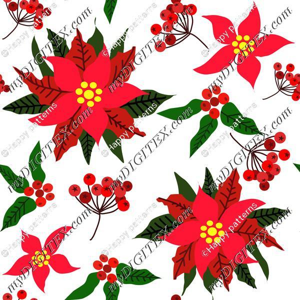 Christmas Star Flower,Red Berries and Green Leaves Ponsettia Flower on white