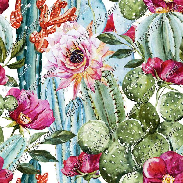 Watercolor Succulents (on white)