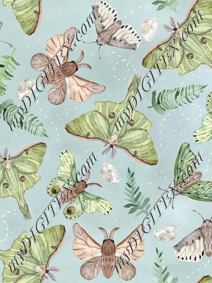 20-03-18 silk moth 8 cm