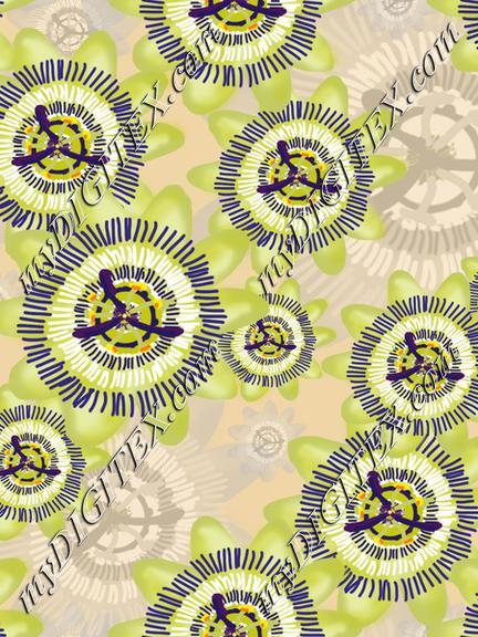 Passiflora flowers creme