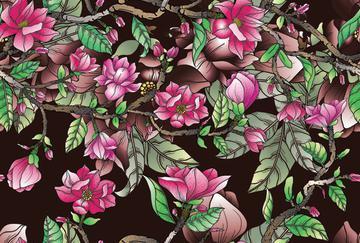 magnoliaallover