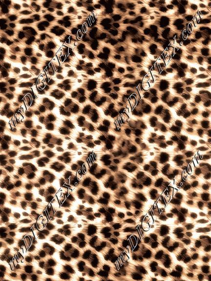 Leopard - 2096