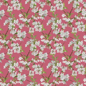 Blossom_4x_Spring