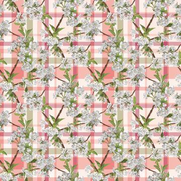 Blossom_4x_Country