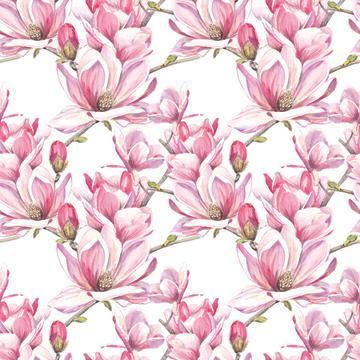 Magnolia_4x_Orig