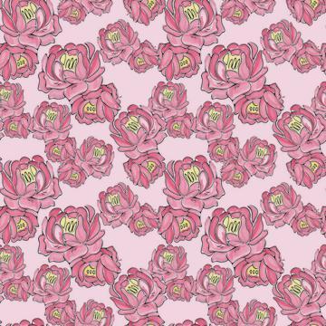 Porteous_Pink