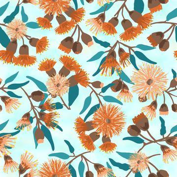 Australian Flowering Gum BLossom