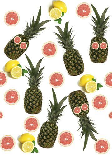 pinapple and lemon print revised