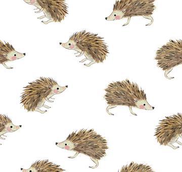 9809702_rhedgehog-and-dandelion2
