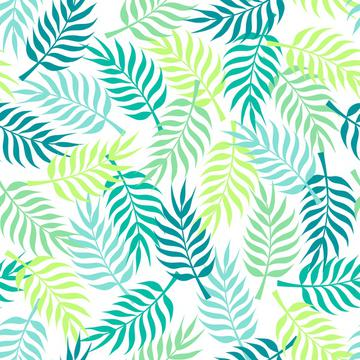 Tropical palm tree leaves on white background