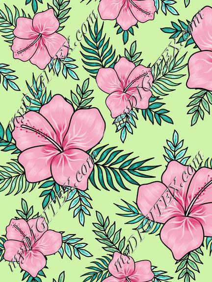 hibiscus8