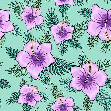 hibiscus13
