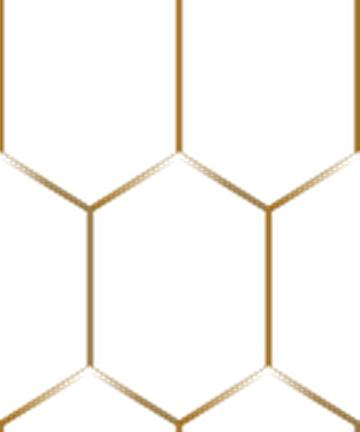 Gold mesh