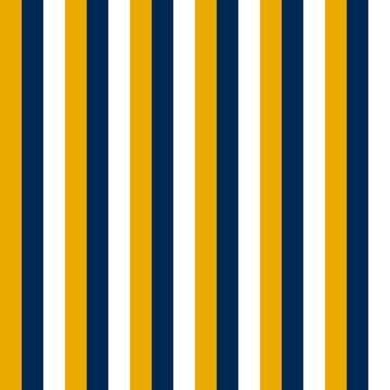 Mountaineer Vertical Stripe