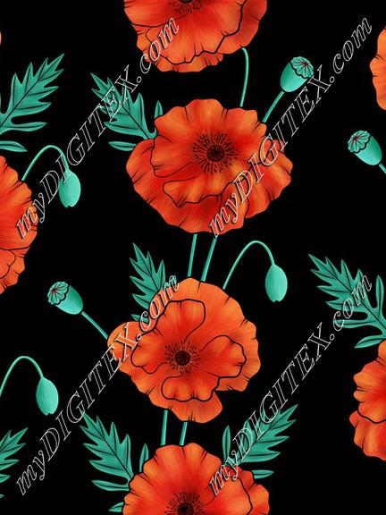 Poppies on black background