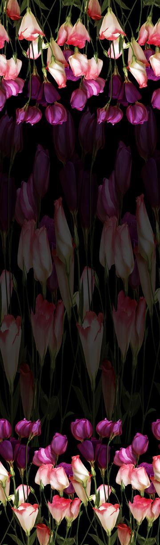 Untitled-1 copy z