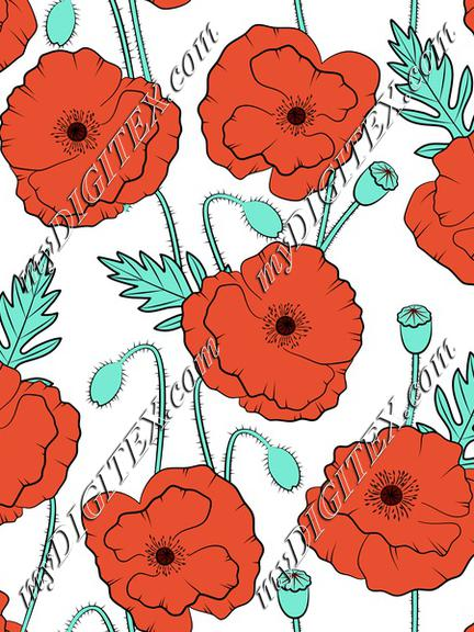 Poppies on white backgroung