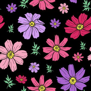 cosmos flower black_201102_PNSC