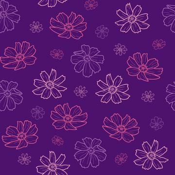 cosmos flower outline_201102_0P36