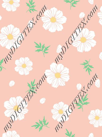 White cosmos flower with leaves and petals on peach background