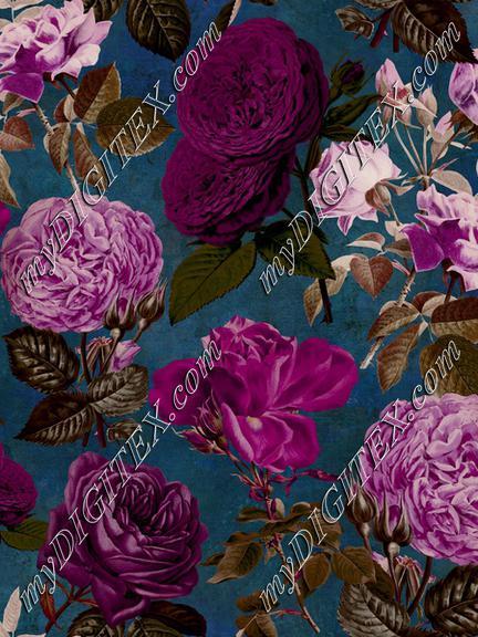 Moody Nostalgic Roses II