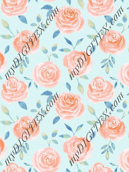 Roses peach blue2