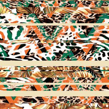 coloured animal print skin texture chevron stripes