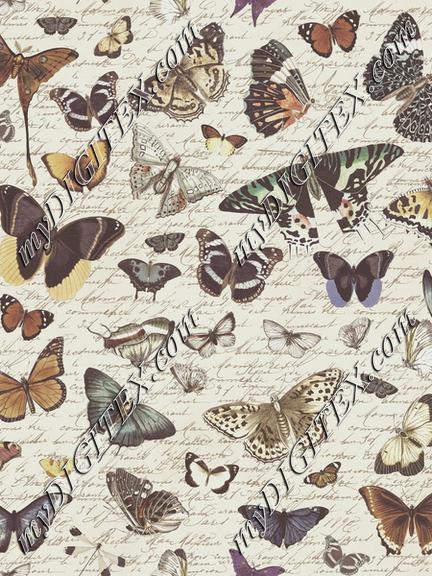 Butterfly Nostalgia