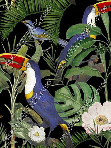 Tropical Jungle Toucans MASTER KORREK