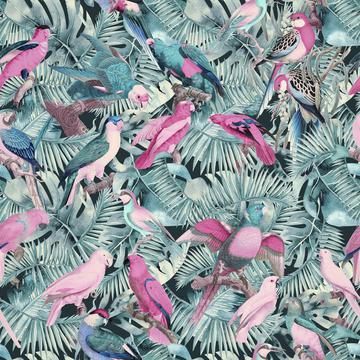 Jungle Parrots