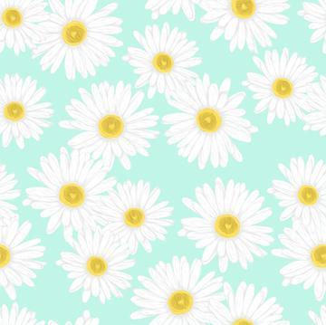 my dear daisy_mint