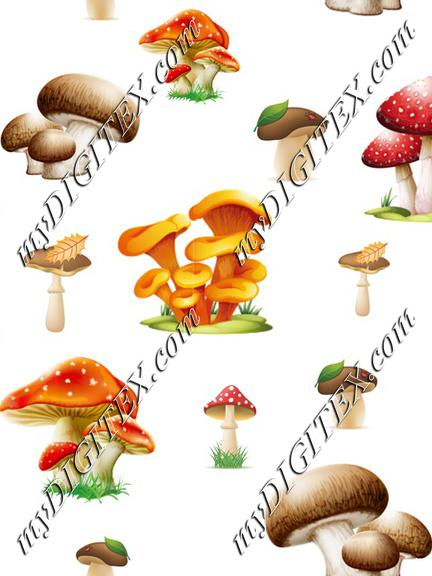 Forest mushrooms on White Autumn