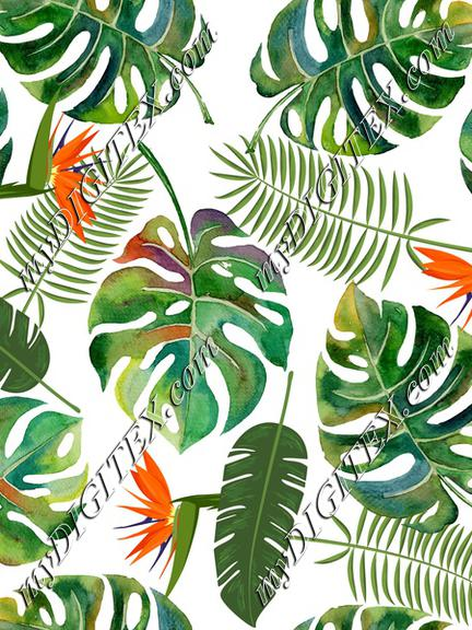 tropical leaves white