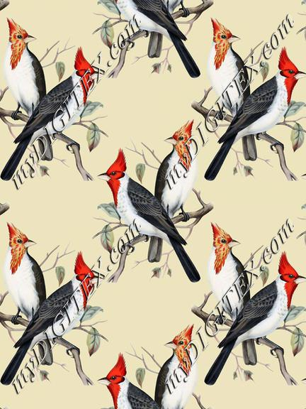 Vintage birds wallpaper
