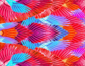 _Gabi feather print 3
