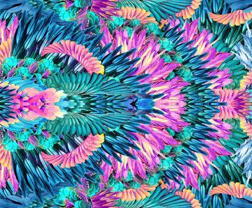 _Gabi feather print