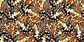 _yellow butterfly print