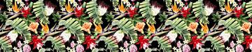 _!Floral tropics