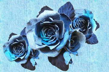 JEANS BLUE ROSES