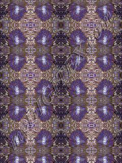 jungle fever purple