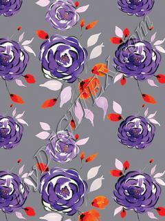 Purple Rossy - Grey