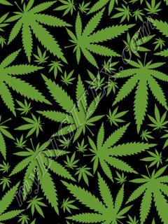 Cannabis (black)