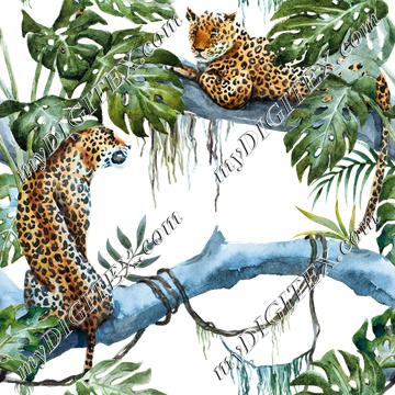 Jungle Leopards