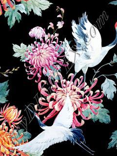 Floral Cranes (on black)